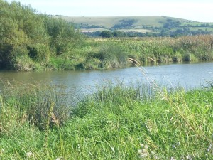 Downstream across the Arun to the South Downs.